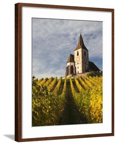 Hunawihr, Alsatian Wine Route, Alsace Region, Haut-Rhin, France-Walter Bibikow-Framed Art Print