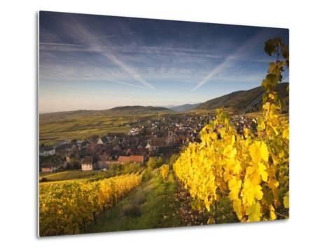 Riquewihr, Alsatian Wine Route, Alsace Region, Haut-Rhin, France-Walter Bibikow-Metal Print