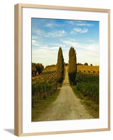 Late Summer Wine Scene in the Hills of Panzano, Tuscany, Italy-Richard Duval-Framed Art Print