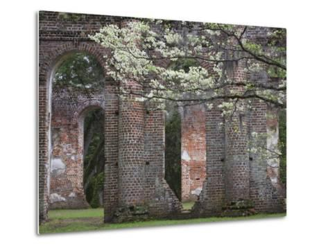 Ruins in the Spring of Old Sheldon Church, South Carolina, Usa-Joanne Wells-Metal Print