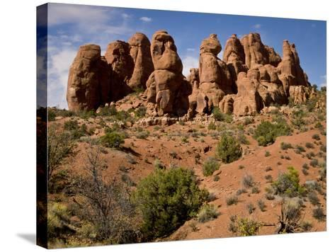 Garden of Eden Area, Arches National Park, Utah, Usa-Rob Sheppard-Stretched Canvas Print