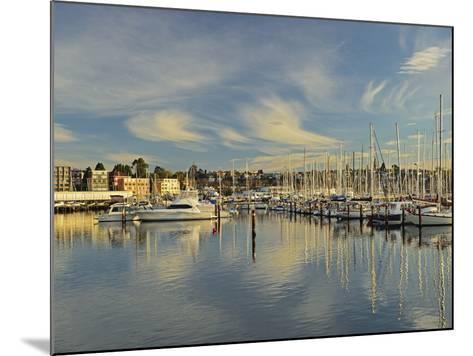 Sandy Bay, Hobart, Tasmania, Australia, Pacific-Jochen Schlenker-Mounted Photographic Print