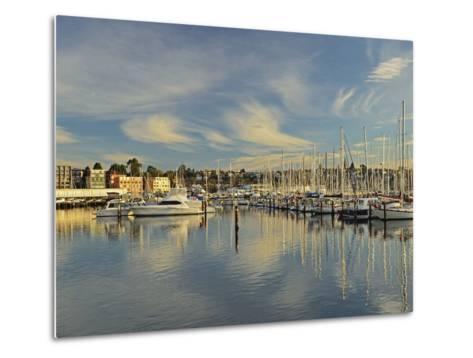 Sandy Bay, Hobart, Tasmania, Australia, Pacific-Jochen Schlenker-Metal Print