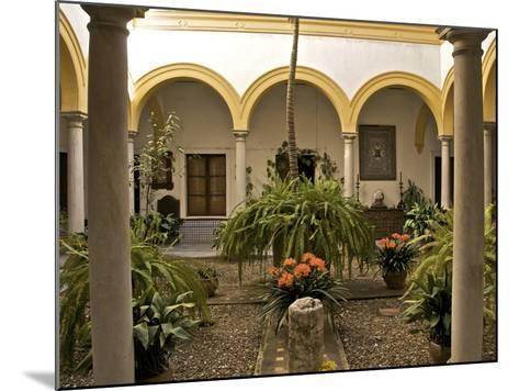 A Patio in the Alcazar, Seville, Andalusia, Spain, Europe-Guy Thouvenin-Mounted Photographic Print