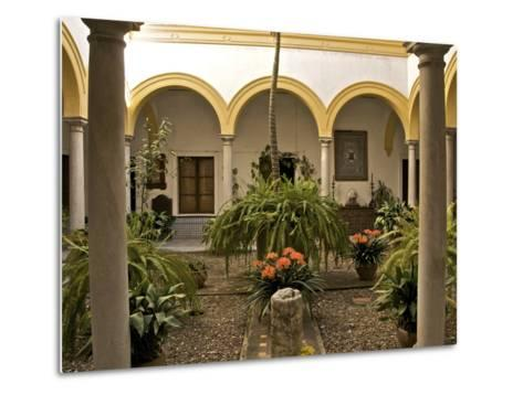 A Patio in the Alcazar, Seville, Andalusia, Spain, Europe-Guy Thouvenin-Metal Print