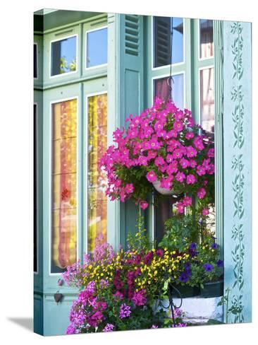 Window With Flowers, France, Europe-Guy Thouvenin-Stretched Canvas Print