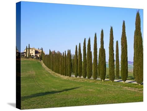 Val D'Orcia, Siena Province, Siena, Tuscany, Italy, Europe-Nico Tondini-Stretched Canvas Print