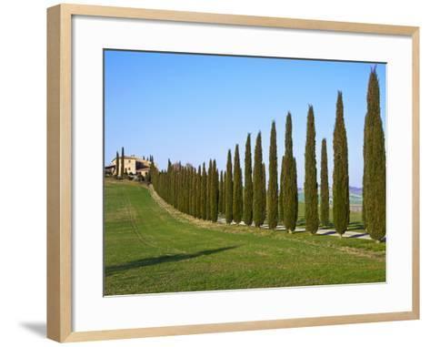 Val D'Orcia, Siena Province, Siena, Tuscany, Italy, Europe-Nico Tondini-Framed Art Print
