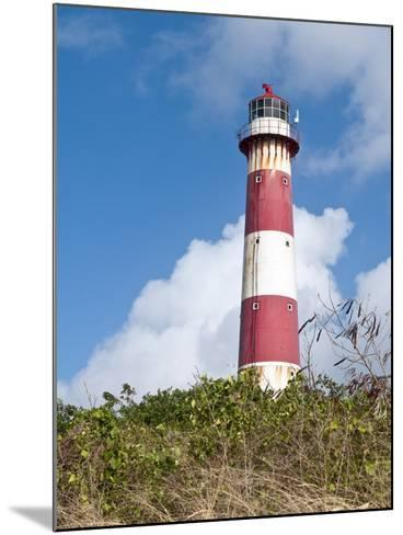 South Point Lighthouse, Barbados, Windward Islands, West Indies, Caribbean, Central America-Michael DeFreitas-Mounted Photographic Print