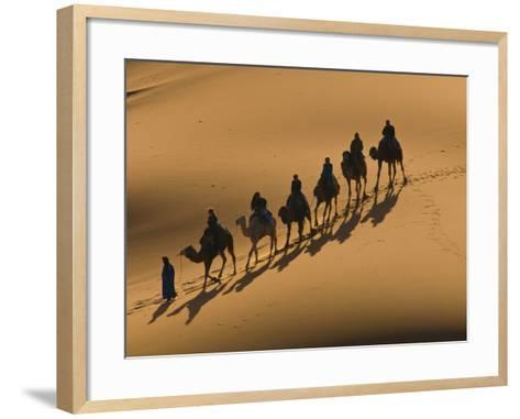 Camel Caravan Riding Through the Sand Dunes of Merzouga, Morocco, North Africa, Africa-Michael Runkel-Framed Art Print