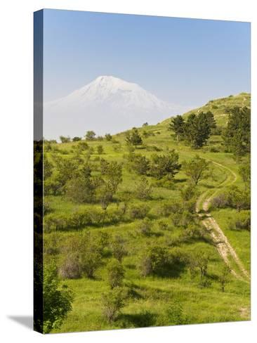 Path Leading to Mount Ararat, Armenia, Caucasus, Central Asia, Asia-Michael Runkel-Stretched Canvas Print