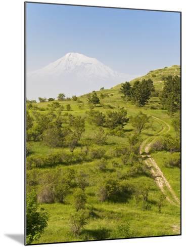 Path Leading to Mount Ararat, Armenia, Caucasus, Central Asia, Asia-Michael Runkel-Mounted Photographic Print