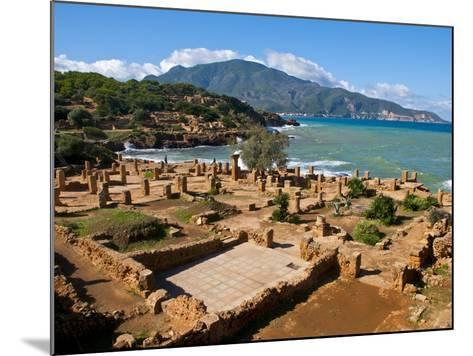 Roman Ruins of Tipasa, on the Algerian Coast, Algeria, North Africa, Africa-Michael Runkel-Mounted Photographic Print