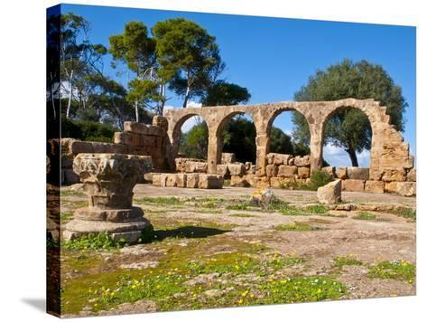 Roman Ruins of Tipasa, Algeria, North Africa, Africa-Michael Runkel-Stretched Canvas Print