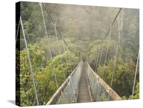Swingbridge, Motu Falls, Motu, Gisborne, North Island, New Zealand, Pacific-Jochen Schlenker-Stretched Canvas Print