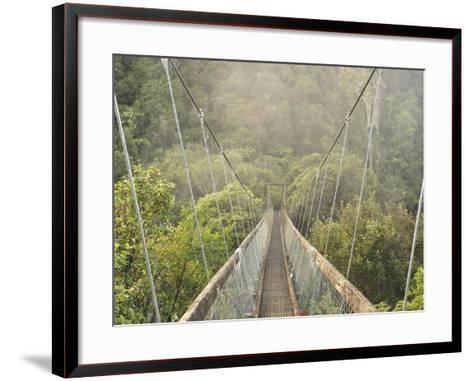 Swingbridge, Motu Falls, Motu, Gisborne, North Island, New Zealand, Pacific-Jochen Schlenker-Framed Art Print
