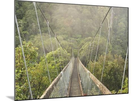 Swingbridge, Motu Falls, Motu, Gisborne, North Island, New Zealand, Pacific-Jochen Schlenker-Mounted Photographic Print