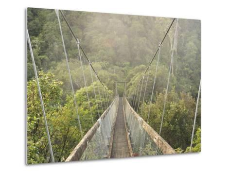 Swingbridge, Motu Falls, Motu, Gisborne, North Island, New Zealand, Pacific-Jochen Schlenker-Metal Print
