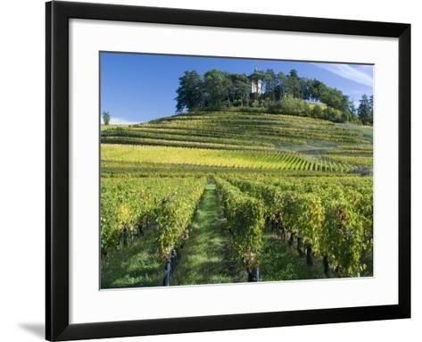 Vineyards, St. Emilion, Gironde, France, Europe-Robert Cundy-Framed Art Print