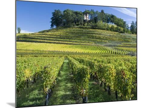 Vineyards, St. Emilion, Gironde, France, Europe-Robert Cundy-Mounted Photographic Print