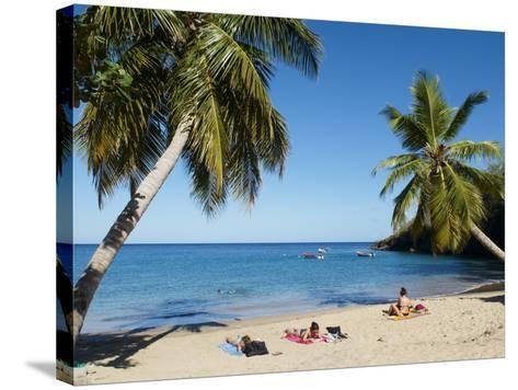 Anse Dufour Beach, Martinique, French West Indies, Caribbean, Central America--Stretched Canvas Print