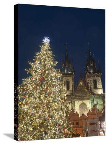 Gothic Tyn Church, Christmas Tree at Twilight in Old Town Square, Stare Mesto, Prague-Richard Nebesky-Stretched Canvas Print