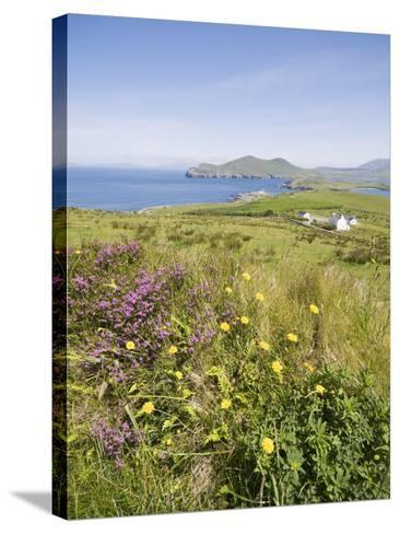 Valentia Island, Ring of Kerry, County Kerry, Munster, Republic of Ireland, Europe--Stretched Canvas Print