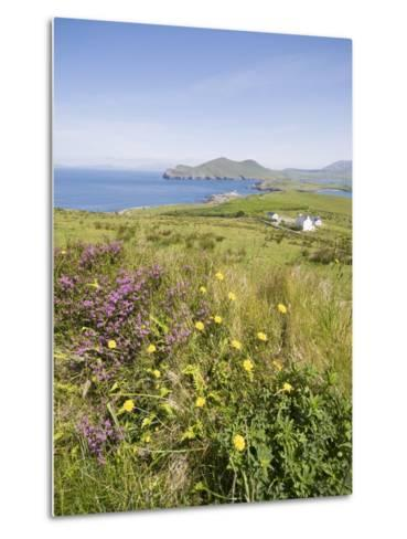 Valentia Island, Ring of Kerry, County Kerry, Munster, Republic of Ireland, Europe--Metal Print