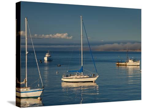 Monterey, California, United States of America, North America-Alan Copson-Stretched Canvas Print