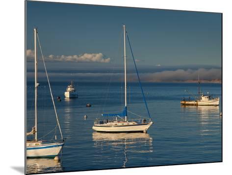 Monterey, California, United States of America, North America-Alan Copson-Mounted Photographic Print