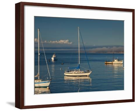 Monterey, California, United States of America, North America-Alan Copson-Framed Art Print
