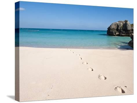 Warwick Long Bay, Jobson's Cove, Bermuda, Central America-Michael DeFreitas-Stretched Canvas Print