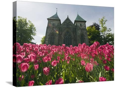 Tulips in Front of Stavanger Cathedral, Stavanger, Norway, Scandinavia, Europe-Christian Kober-Stretched Canvas Print