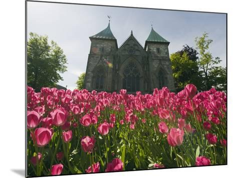 Tulips in Front of Stavanger Cathedral, Stavanger, Norway, Scandinavia, Europe-Christian Kober-Mounted Photographic Print