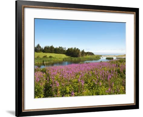 Field Near Lakeville, Prince Edward Island, Canada, North America-Michael DeFreitas-Framed Art Print