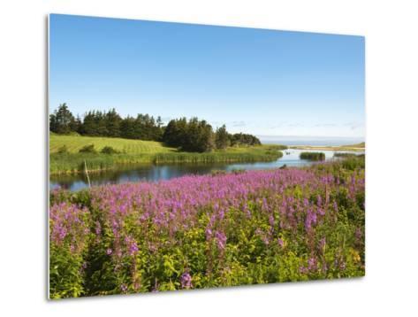 Field Near Lakeville, Prince Edward Island, Canada, North America-Michael DeFreitas-Metal Print