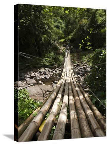 Bamboo Bridge at Dark View Falls, St. Vincent and the Grenadines, Windward Islands-Michael DeFreitas-Stretched Canvas Print