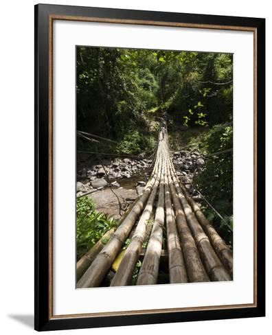 Bamboo Bridge at Dark View Falls, St. Vincent and the Grenadines, Windward Islands-Michael DeFreitas-Framed Art Print