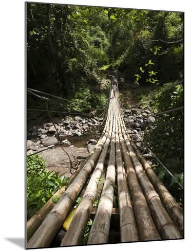 Bamboo Bridge at Dark View Falls, St. Vincent and the Grenadines, Windward Islands-Michael DeFreitas-Mounted Photographic Print
