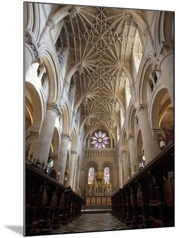 Christ Church Cathedral Interior, Oxford University, Oxford, England-Peter Barritt-Mounted Photographic Print