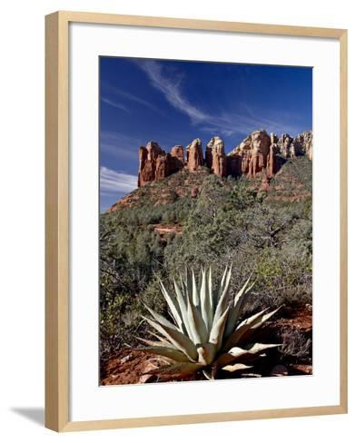 Red Rock Formations and An Agave Plant, Coconino National Forest, Arizona-James Hager-Framed Art Print