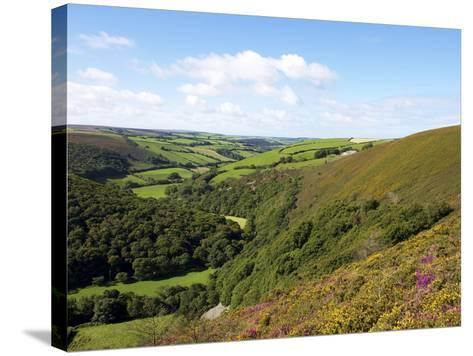 Exmoor From County Gate, Looking Towards Brendon, Exmoor National Park, Somerset, England, Uk-Jeremy Lightfoot-Stretched Canvas Print