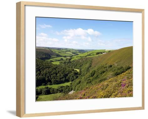 Exmoor From County Gate, Looking Towards Brendon, Exmoor National Park, Somerset, England, Uk-Jeremy Lightfoot-Framed Art Print