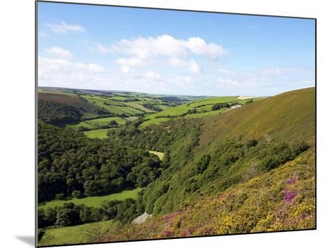 Exmoor From County Gate, Looking Towards Brendon, Exmoor National Park, Somerset, England, Uk-Jeremy Lightfoot-Mounted Photographic Print