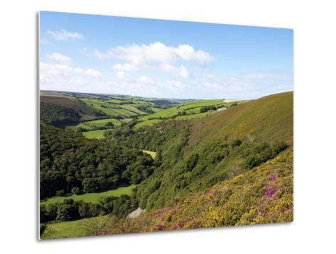 Exmoor From County Gate, Looking Towards Brendon, Exmoor National Park, Somerset, England, Uk-Jeremy Lightfoot-Metal Print