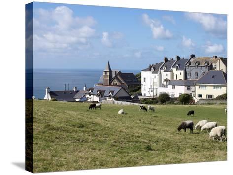 Grazing Sheep, Mortehoe, Devon, England, United Kingdom, Europe-Jeremy Lightfoot-Stretched Canvas Print