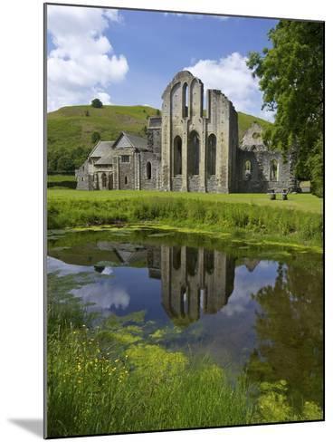 Valle Crucis, Ruined Cistercian Abbey, in Llantysilio, Near Llangollen, Denbighshire, Wales, Uk-Peter Barritt-Mounted Photographic Print