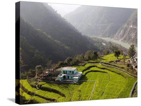 Farm Among a Green Fields Close to Rishikesh, Uttarkhand, India, Asia--Stretched Canvas Print