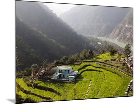 Farm Among a Green Fields Close to Rishikesh, Uttarkhand, India, Asia--Mounted Photographic Print
