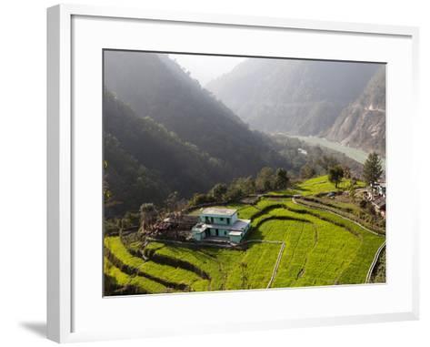 Farm Among a Green Fields Close to Rishikesh, Uttarkhand, India, Asia--Framed Art Print